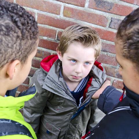 El acoso escolar: las aulas del miedo