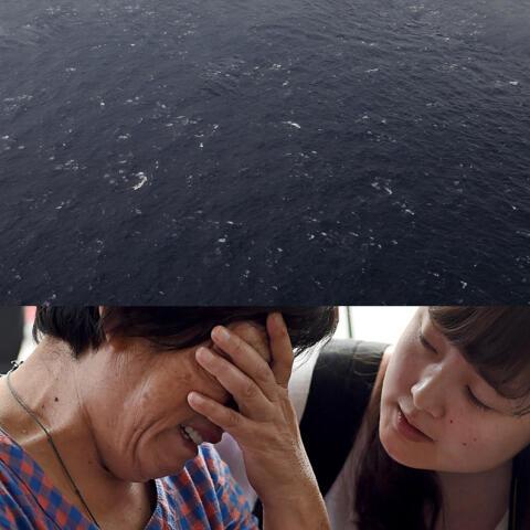 Vuelo Malaysia Airlines MH370, caso resuelto