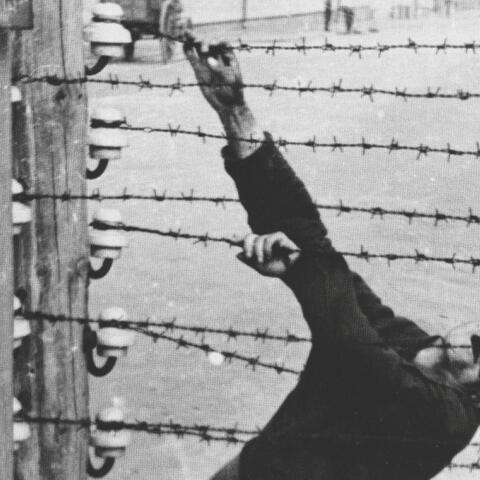 Las espeluznantes fotografías robadas a los SS