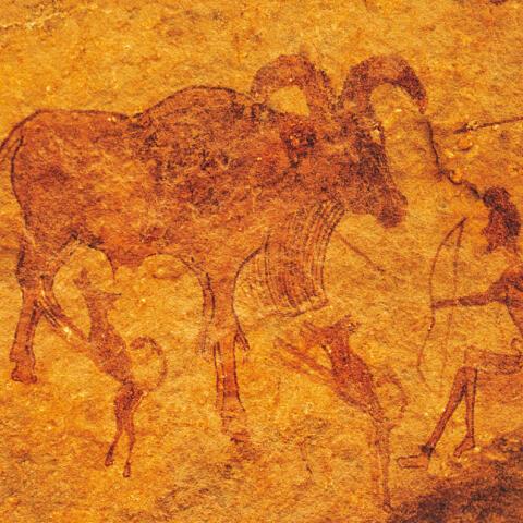El hombre y el perro: treinta mil años de amistad